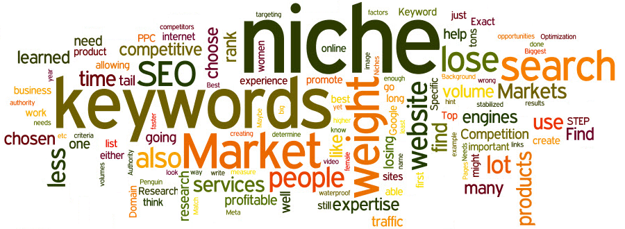 2016 What is niche marketing
